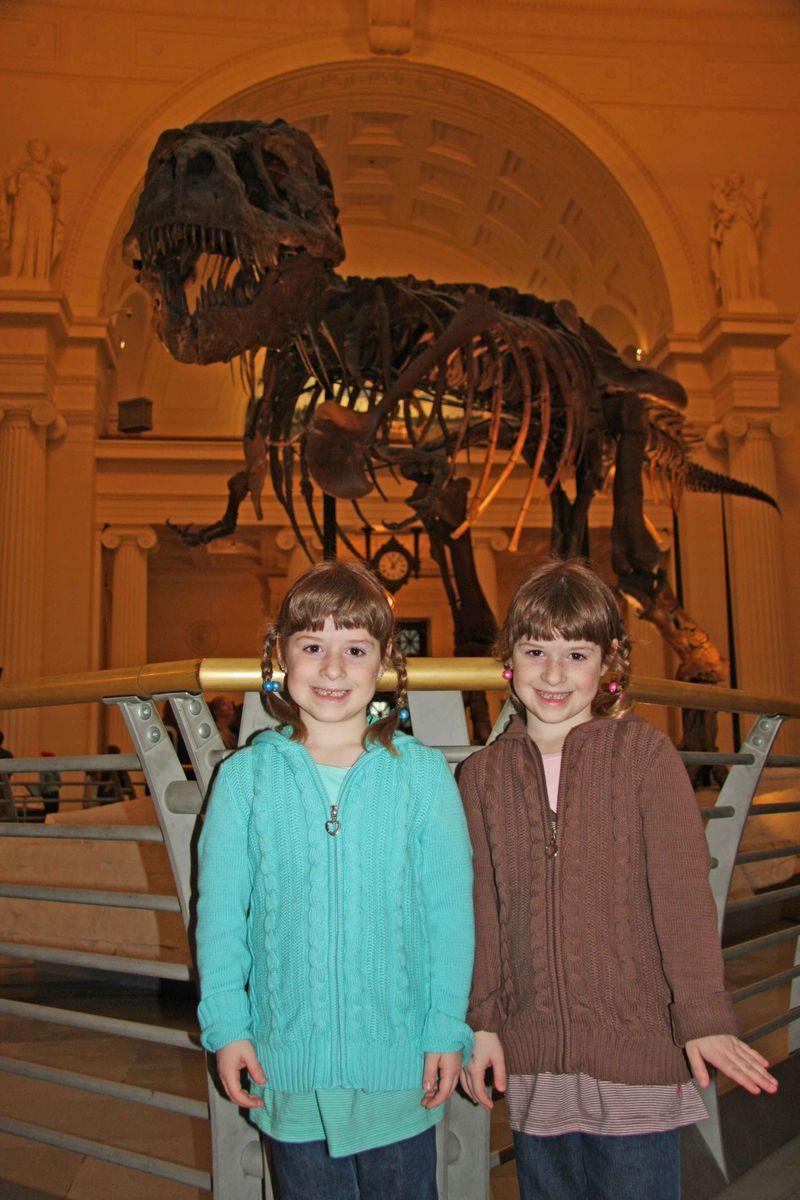 T-Rex Field Museum